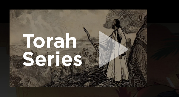 Torah Series